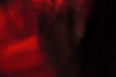 licht-verzaubert_2_c-martin_gries